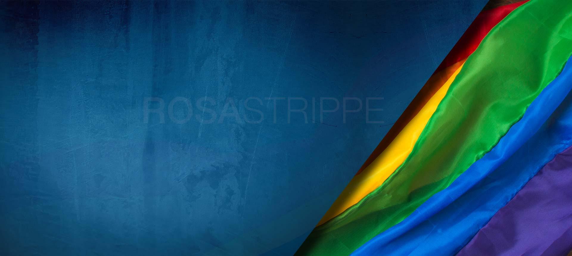 Lesben Schwule und Transgender psychische Gesundheit